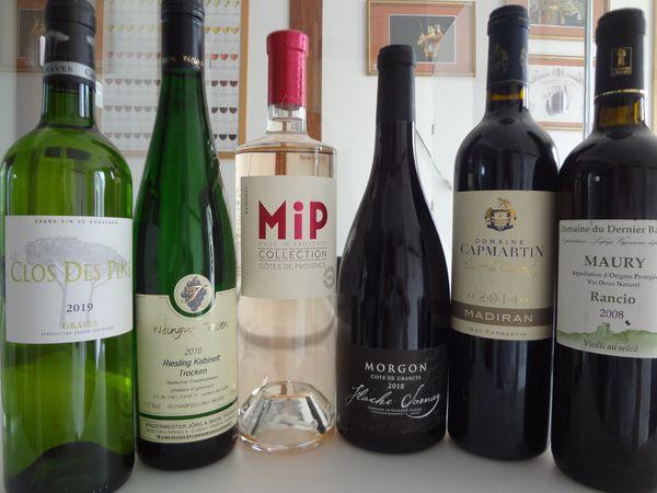 Journée d'initiation et découverte des vins à Moidieu-Détourbe  - VINO PASSION