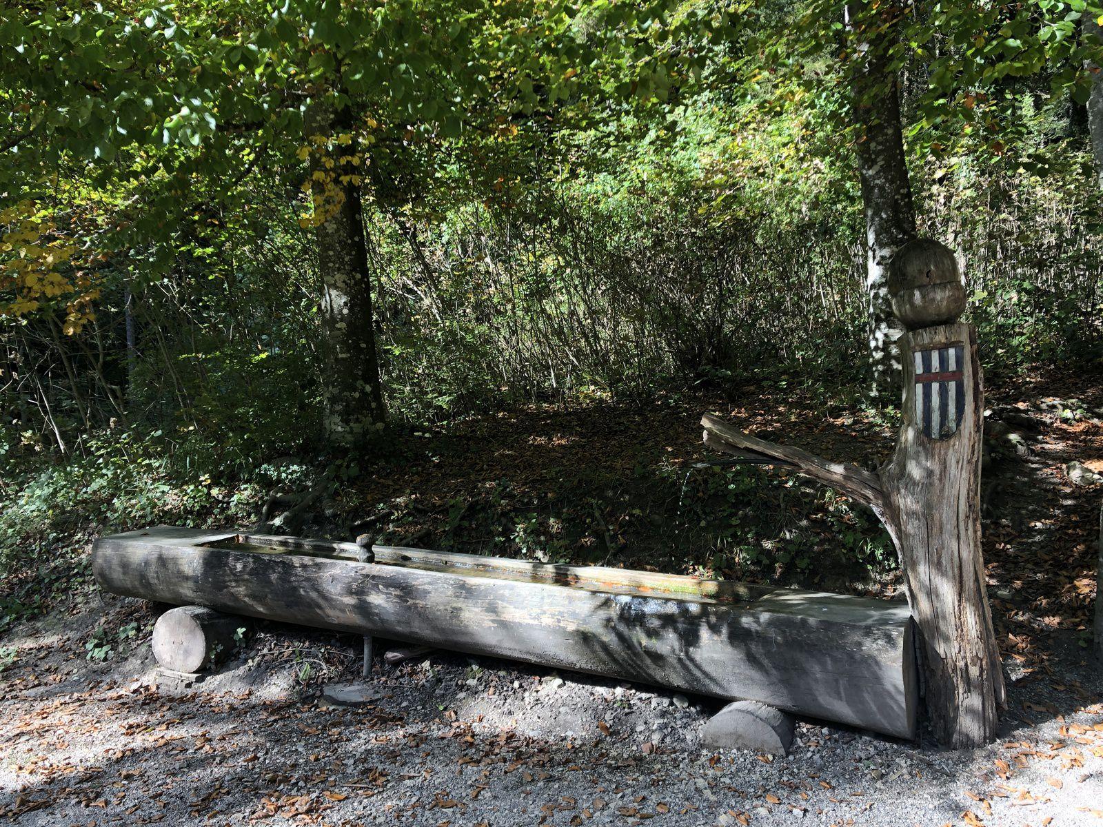 Mardi 19 Octobre : du coté de Baulmes Champvent