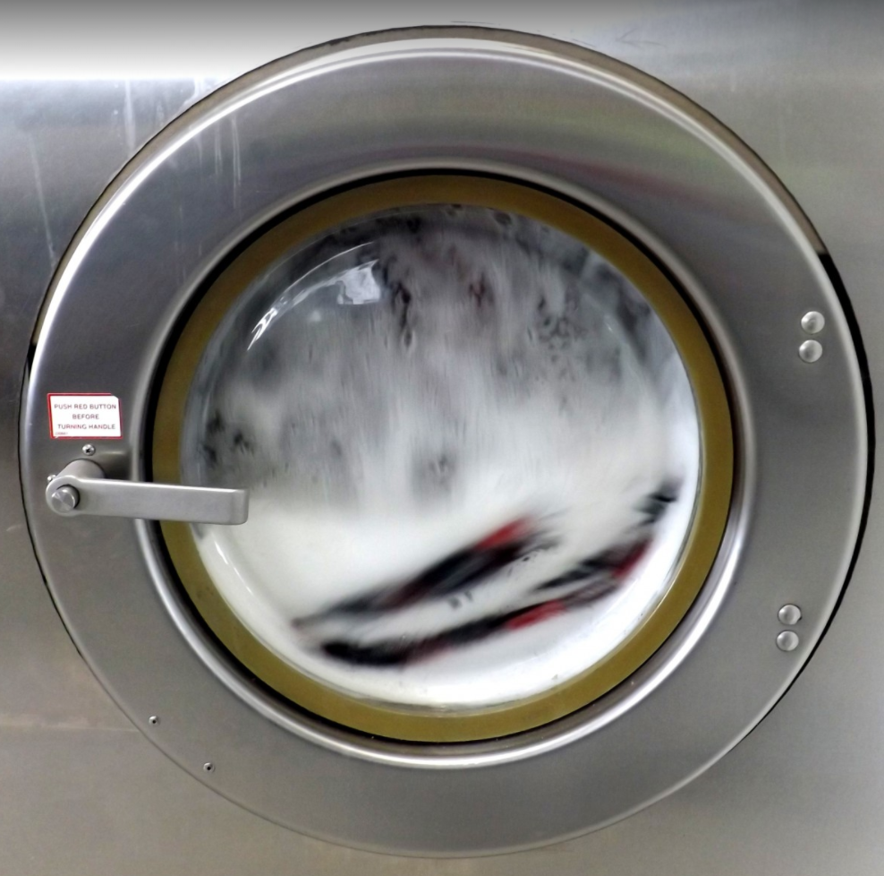 A Pau, les policiers découvrent un chien dans le tambour d'une machine à laver en marche