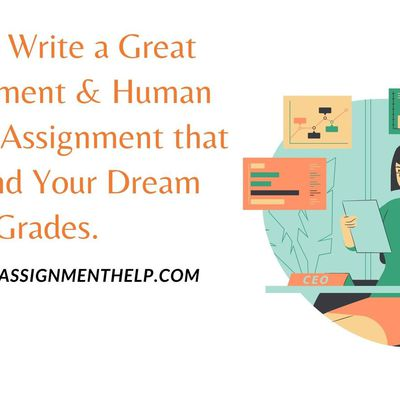 How to Write a Great Management & Human Resource Assignment that Can Land Your Dream Grades.