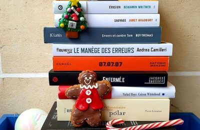 Christmas is reading, Christmas is coming !