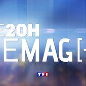 Le 20H Le Mag [...] du 28 novembre 2019 - Le 20h Le Mag | TF1