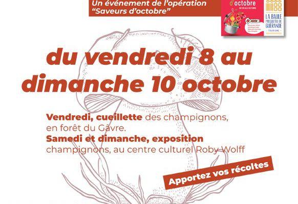 Saint-Molf - Autour des champignons : de la cueillette à l'exposition du 8 au 10 octobre 2021