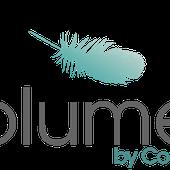 Bienvenue - Plume by Coda