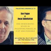 Ilan Pappe and Awad Abdelfattah on 'One Democratic State'