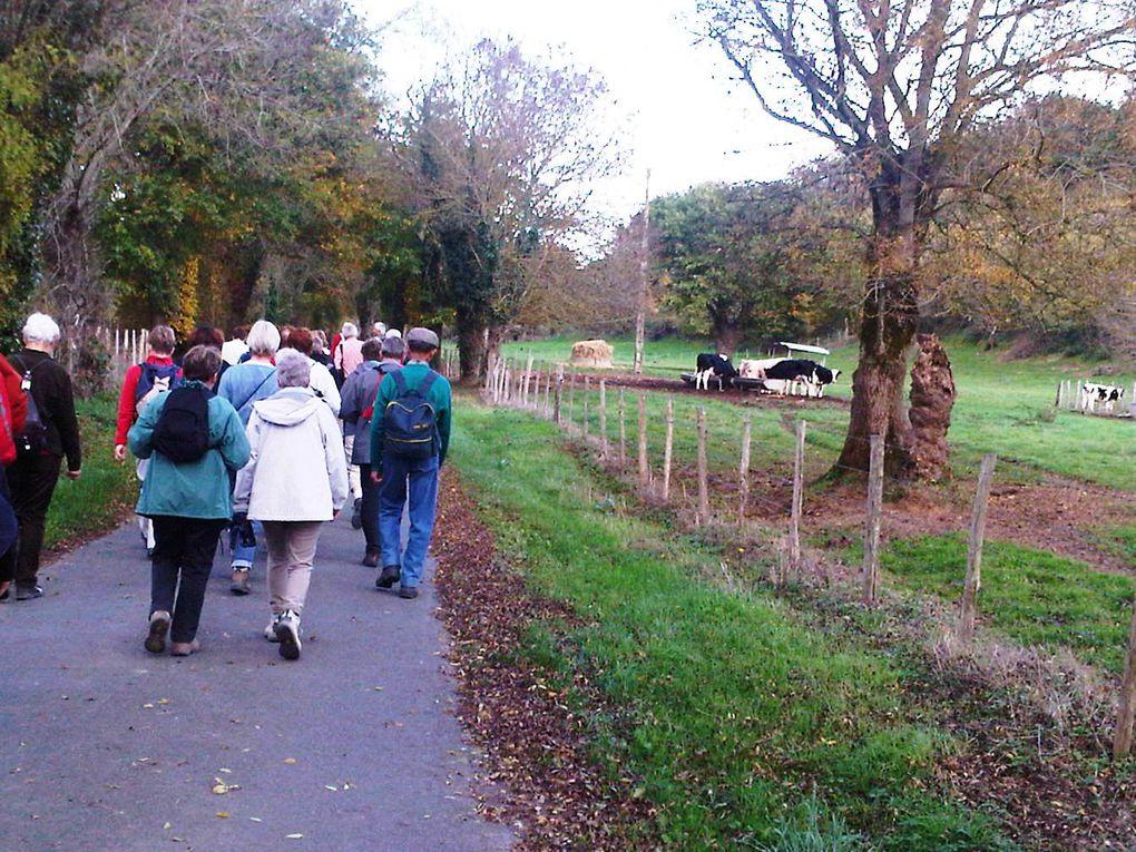 Richesse et quiétude des paysages traversés pendant ces randonnées en Pays de Loire