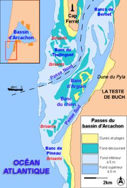 II) L'évolution actuelle et future du Bassin d'Arcachon