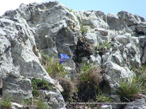 Les rochers de la Sausse ....