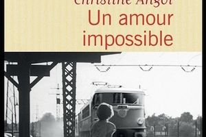 Un amour impossible, de Christine Angot