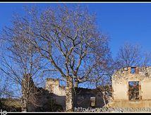 Les ruines de La Fridière (63) ...