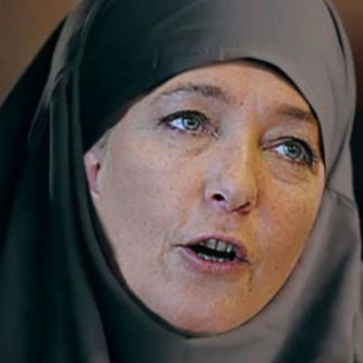 Marine Le Pen : sa fracture avec le FN