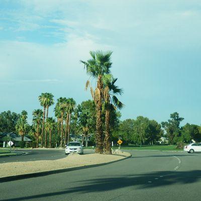 Palm Springs : une ville où il fait bon vivre
