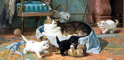 Le monde si doux des chats