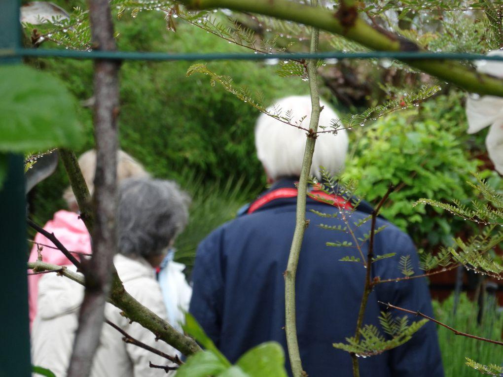 Un groupe de visiteurs de la  SNHF dans  mon jardin Le Clos fleuri  à Chabeuil .......
