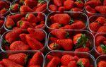 9ème fête de la fraise au lac du Soler en 40 photos