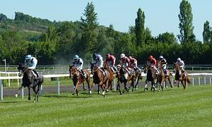 15  Mai  2017  SAINT CLOUD…R-1…C1 PLAT  GALOP