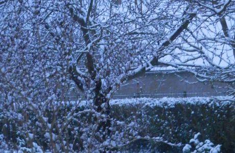 il a neigé !...