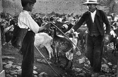 Certains aspects de l'Espagne en fotos (1889-1965)