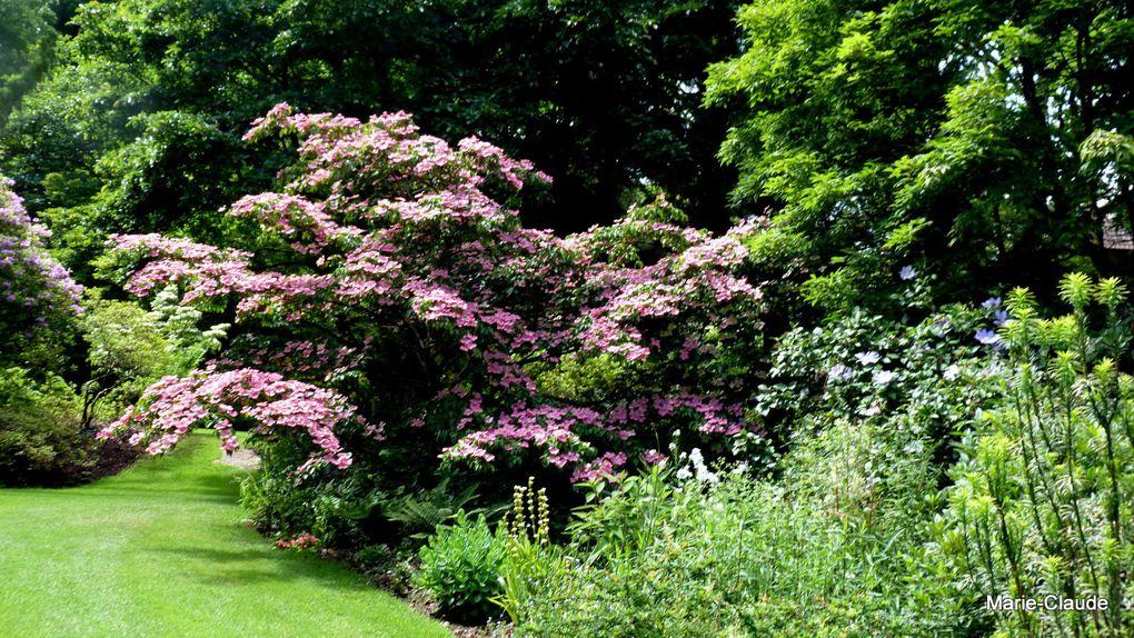 C'est un jardin extraordinaire !!!