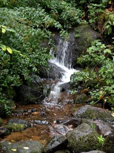 Cascade de Brisecou et ce blog en cascade !