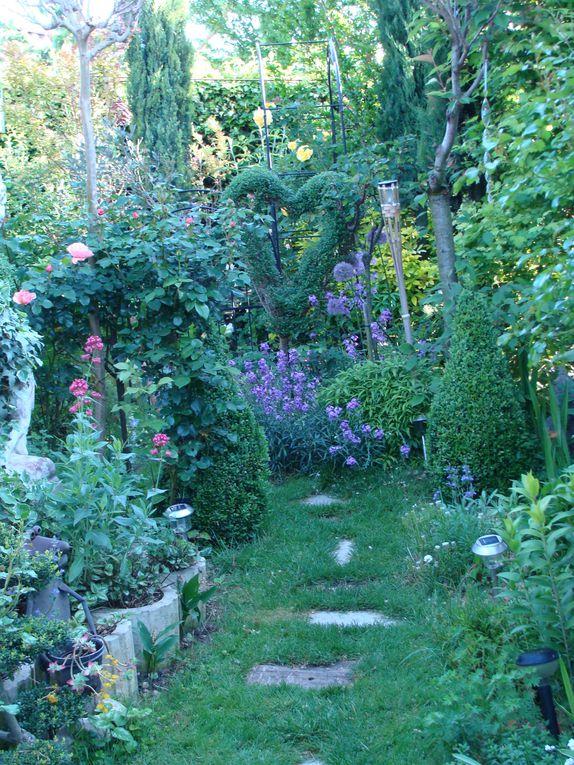 Album - mes-fleurs  jardin à l'ombre