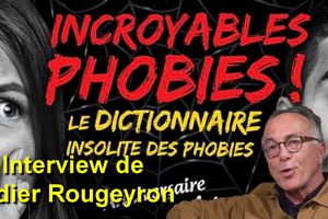 interview - Didier Rougeyron (Incroyables phobies) - Euro Solidary Art Online 2020