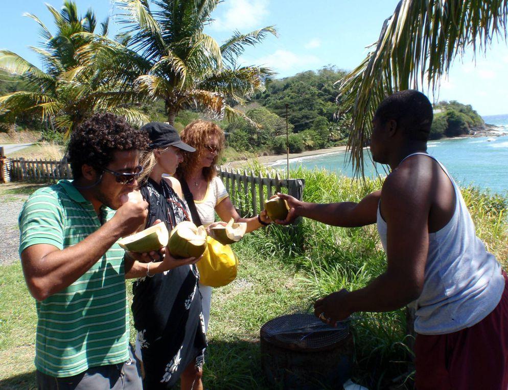 Album - 2010-01-05-Guyane-Suriname-Tobago-Trinidad