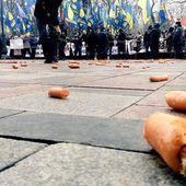 Bagarre générale en plein parlement ukrainien (vidéo) nos chers alliés en démocratie...