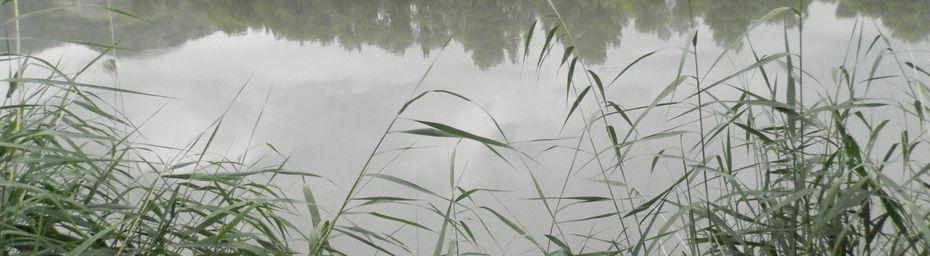 De DIGNE LES BAINS à la MEDITERRANNEE en CANOE