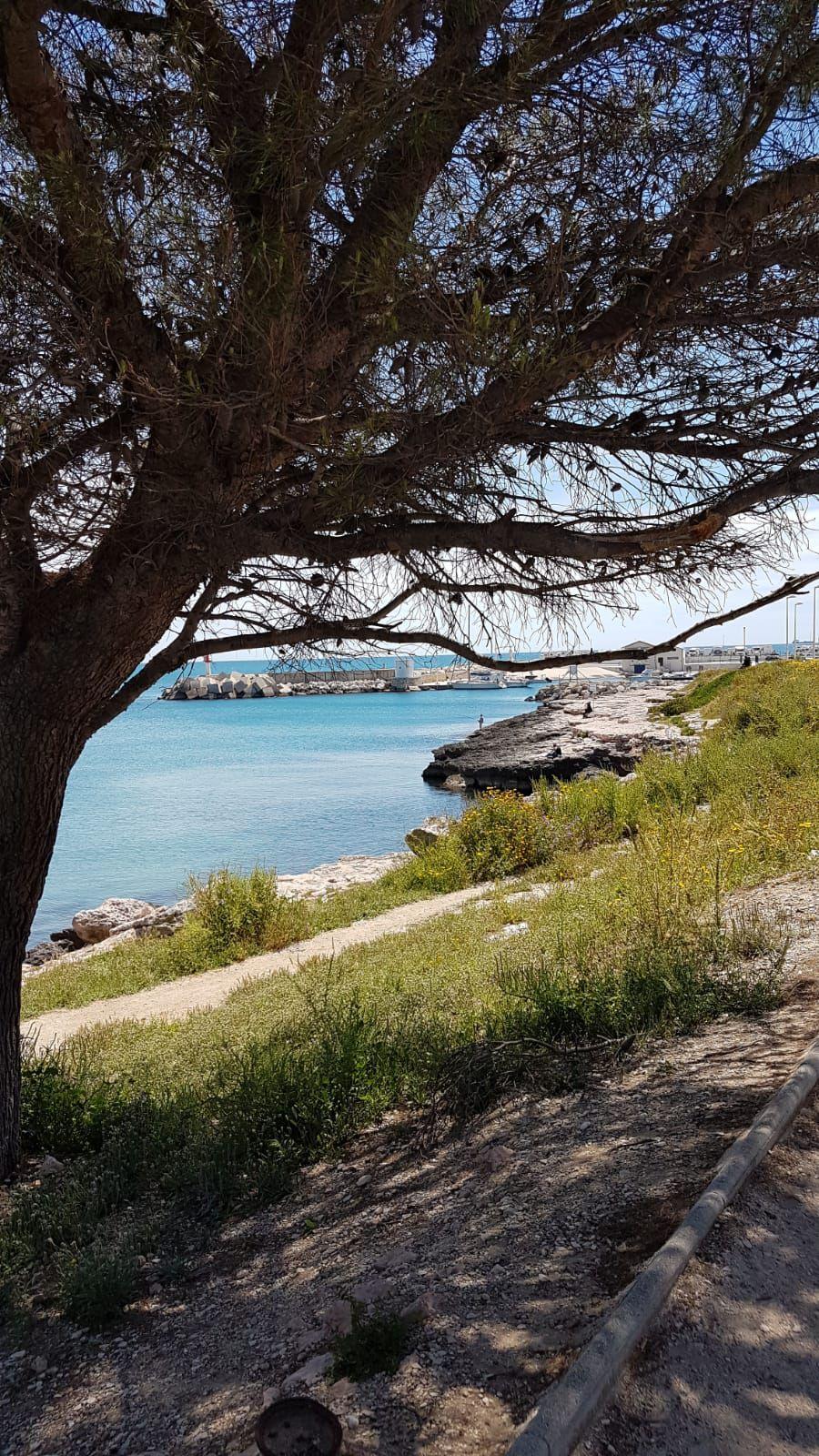 2021-05-21 Les Collines Provencales au Départ du Port de Carro