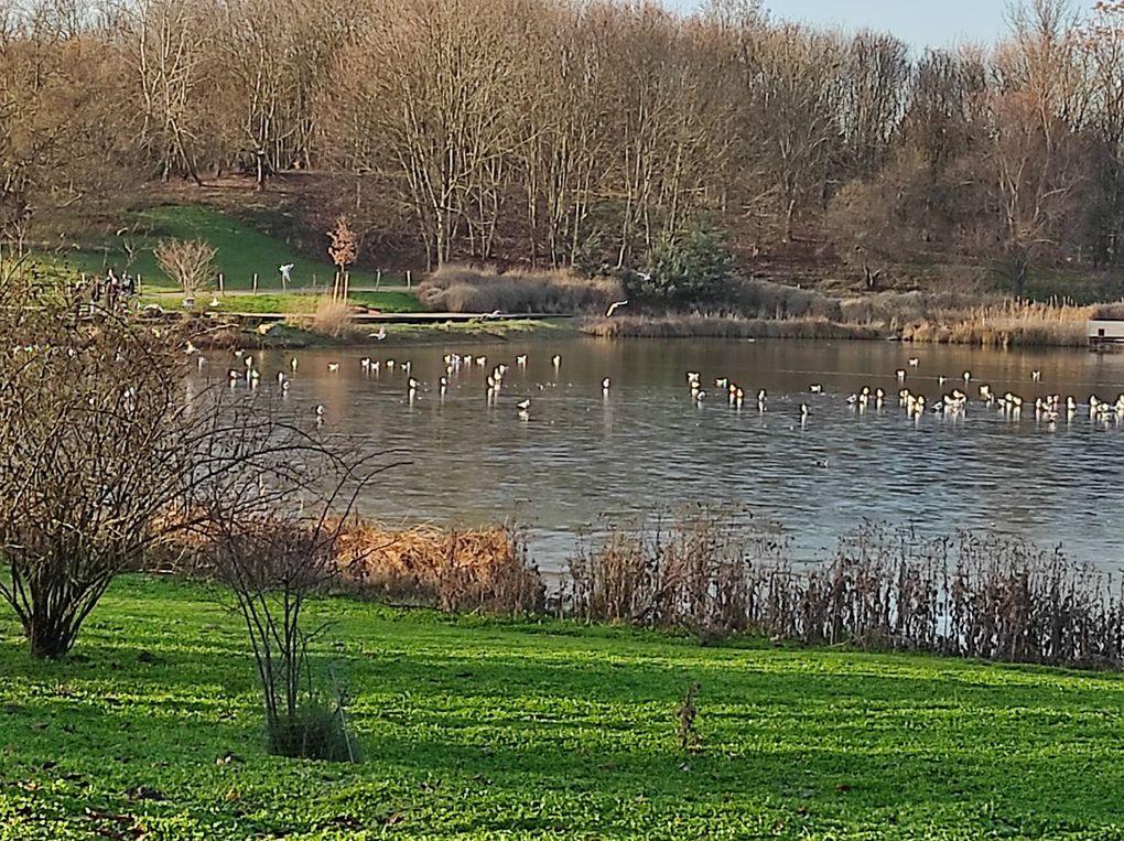 Escapade au Parc de la Courneuve (93)