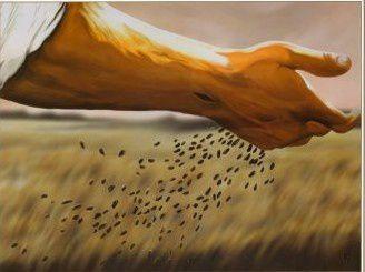 Evangile du Mercredi 21 Juillet « Ils ont donné du fruit » (Mt 13, 1-9) #evangile #parti2zero