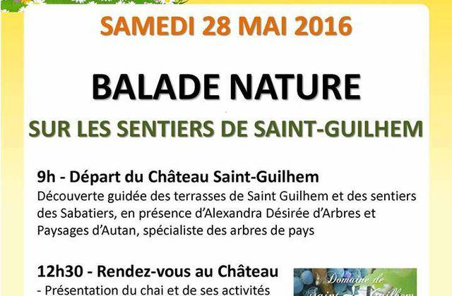 CASTELNAU D'ESTRETEFONDS - JOURNEE NATURE 28 MAI 2016