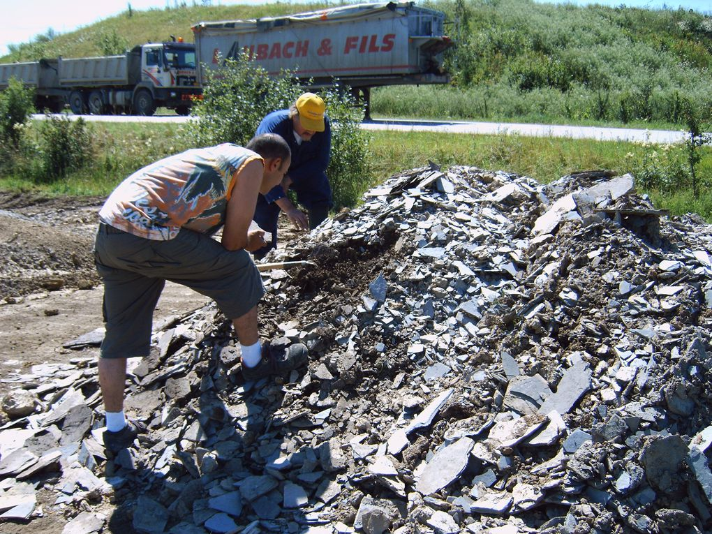 <p> Les principaux sites de fouilles. </p> <p> Cet album vous donnera une idée de quelques-uns des gisements de fossiles ou minéraux visités. </p> <p> Vous y retrouverez également le pays et l'étage stratigraphique principal. </p> <p> Excellente visite ! </p> <p> Phil « Fossil » </p>