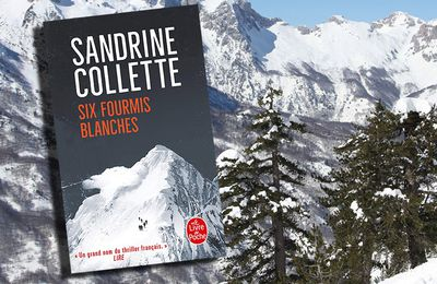 SANDRINE COLLETTE - SI FOURMIS BLANCHES (2015)