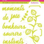 FDSDL003 : LOT DE 10 DIES MOMENTS Fée du Scrap