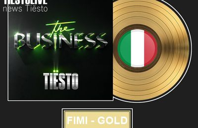 Tiësto, Certified Gold by FIMI for his song The Business