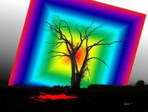 Spectre d'arbre_11