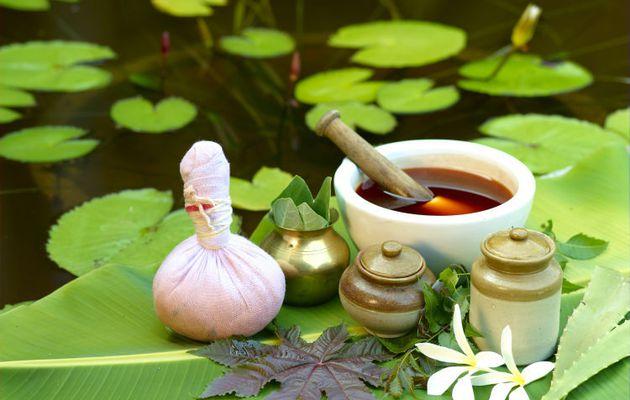 Los Beneficios del te de Tulsi