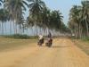de Dakar à Zanzibar