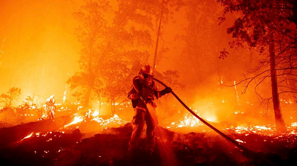 Les incendies : le fléau de cet été 2021