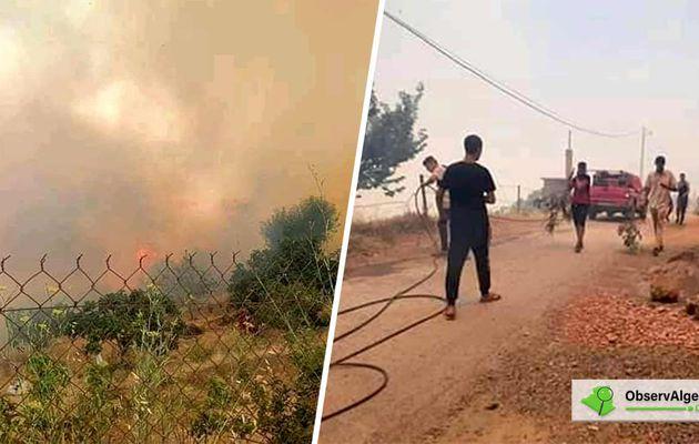 Kabylie : Plusieurs forêts ravagées par le feu