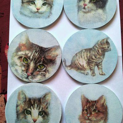Ma collection dessous de verre chats