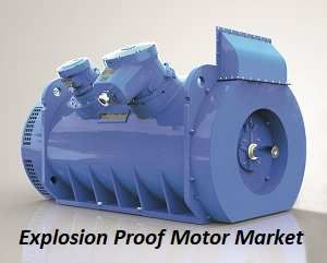Explosion Proof Motor Market Sales, Price, Revenue, Gross Margin and Share 2025