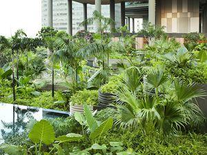 """""""Le jardin est une méditation à ciel ouvert, un secret révélé à qui le mérite"""".  Ghislaine Schoeller"""