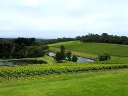 Port Phillip and vineyards