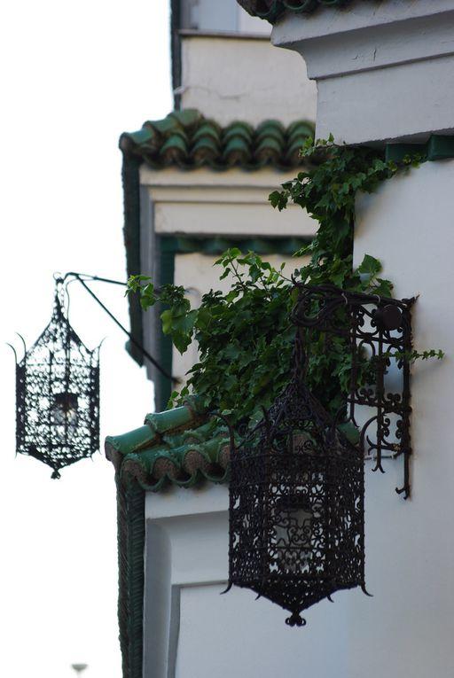 D'autres images dans l'article du 23 novembre 2009 intitulé La Grande mosquée à Paris.