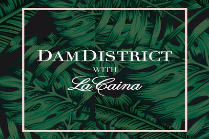 La Caïna: premier album de DamDistrict