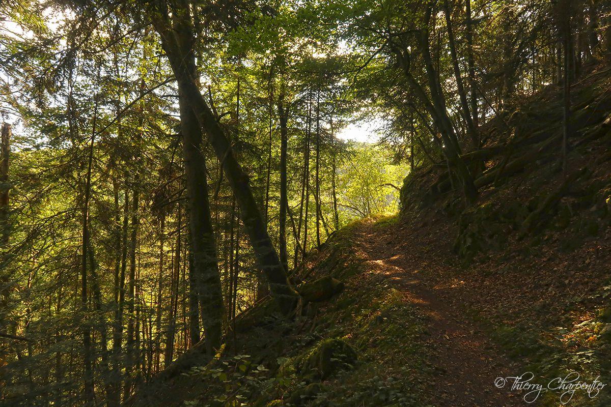 Auvergne - Les Combrailles