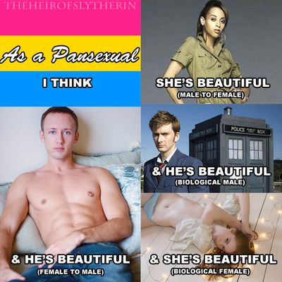 Bi and Pansexual Affirmation